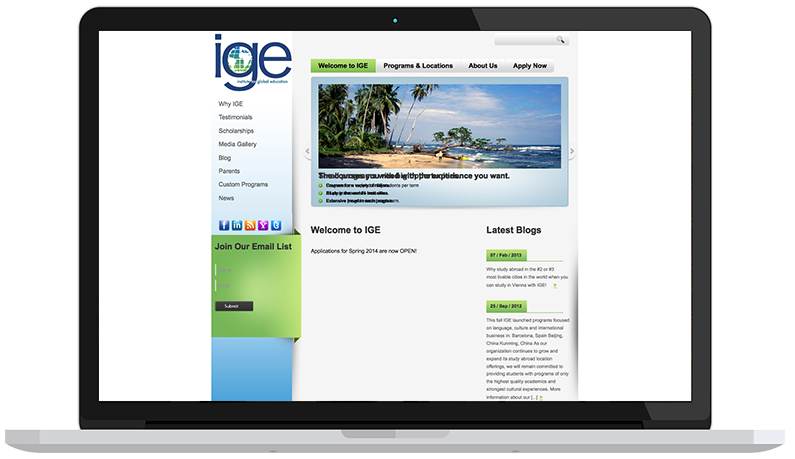 ige-website-before